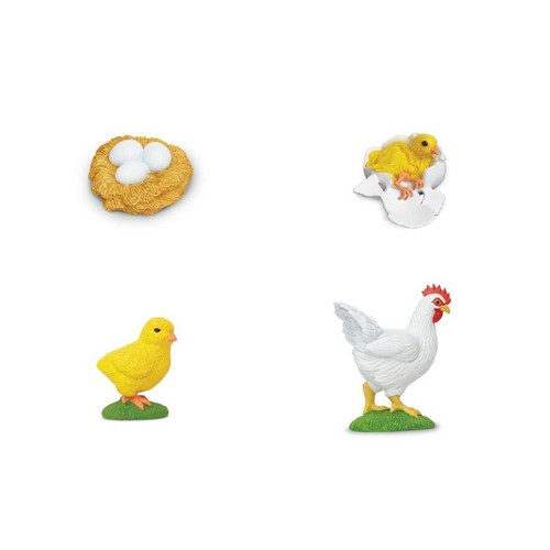 Chicken Lifecycle Figures on Egg To En Life Cycle Worksheet