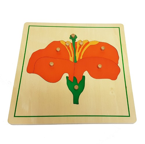 Montessori Botany Cabinet With Tree Leaf And Flower Puzzles