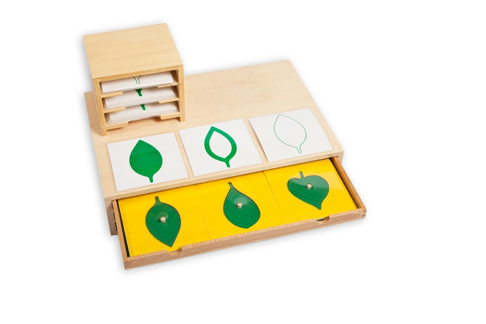 Montessori Botany Cabinet of Leaf Shapes and Cards