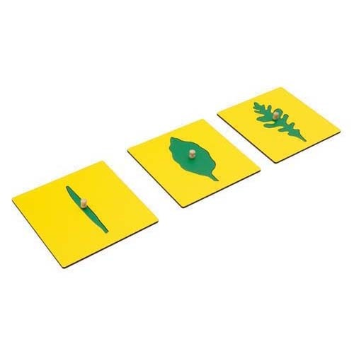 Montessori Leaf Shapes Insets For The Botany Cabinet