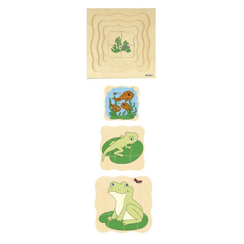 Growth puzzle - frog (NL)