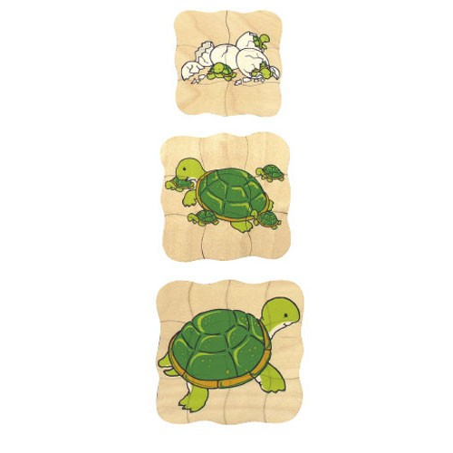 Growth puzzle - turtle (NL)