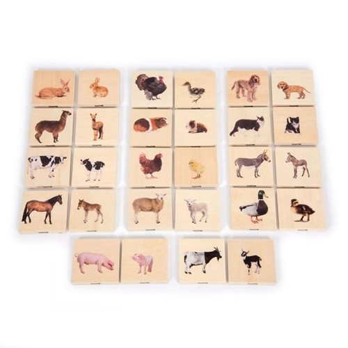 Domestic Animals Wooden Blocks: Adults and Young
