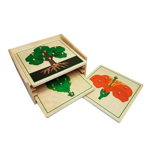 Montessori Botany Cabinet with Tree, Leaf and Flower Puzzles