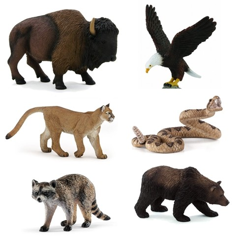 Animals of North America Pack