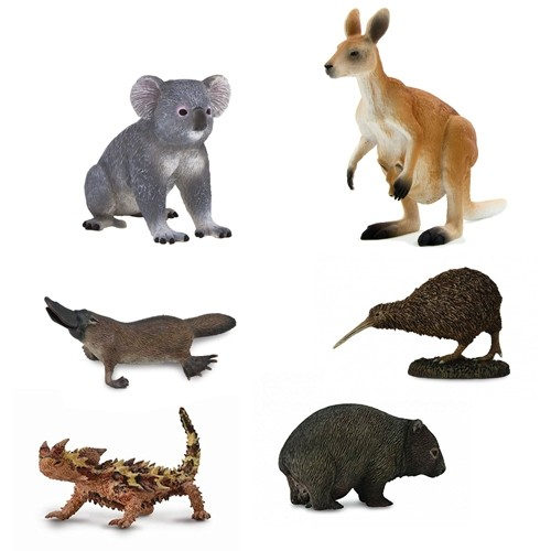 Animals of Australasia  / Oceania Pack