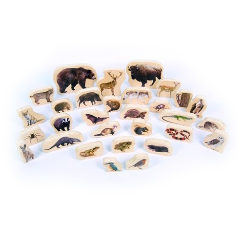 Forest Animals Wooden Blocks