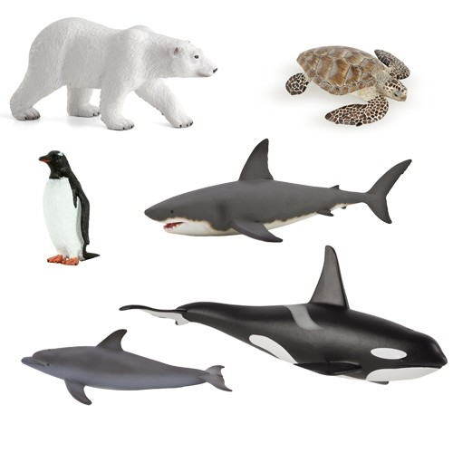 animals of the oceans