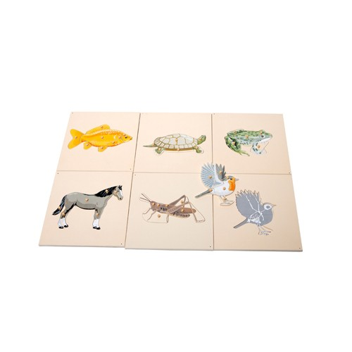 Montessori Zoology Puzzles with Skeletons