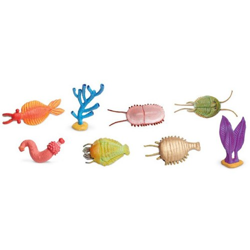Montessori Cambrian Creatures