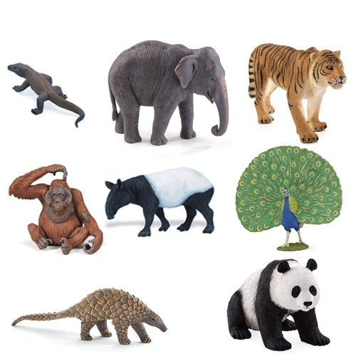 Animals of Asia Pack
