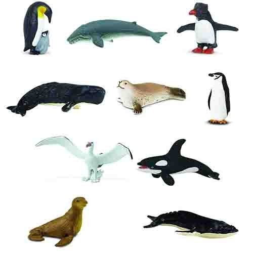 Discount Animals of Antarctica Pack