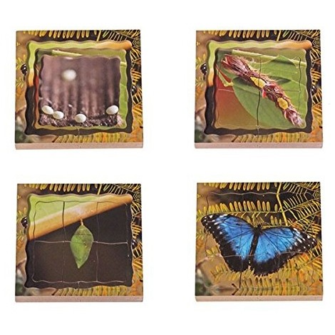 Butterfly Lifecycle Layered Tray Puzzle