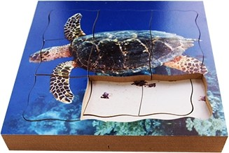 Turtle Lifecycle Layered Tray Puzzle