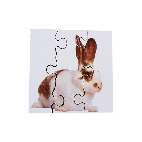 6 Animal Pets Simple Wooden Jigsaws