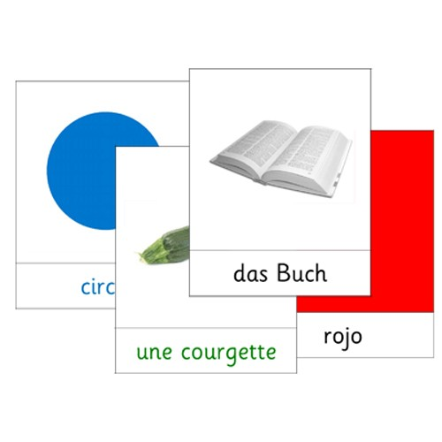 100+ French Word and Picture Cards .pdf file